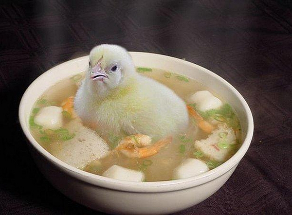 Chicken Soup - this is real chicken soup