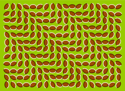 Wave Illusion picture