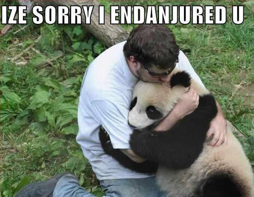 Endangering Panda picture