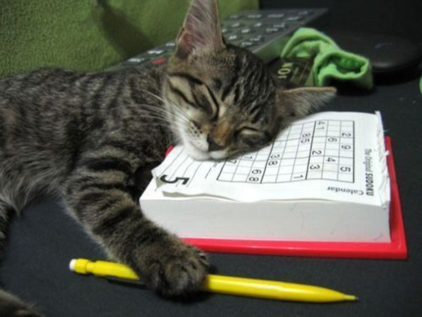 Tiring Sudoku picture