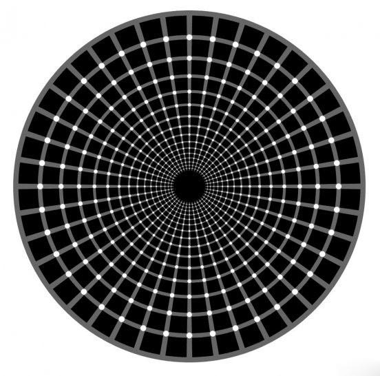 How Many Black Dots picture