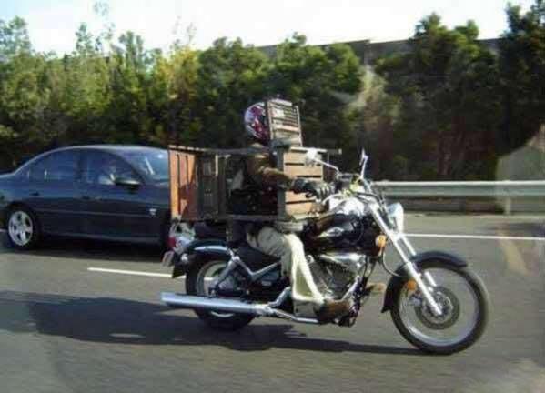 Stupid Biker picture