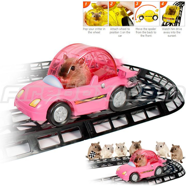Toy for Hamsters picture