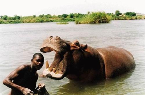 Dangerous Africa picture