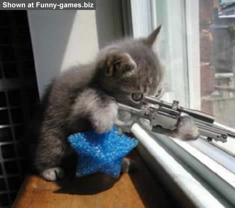 Sniper picture