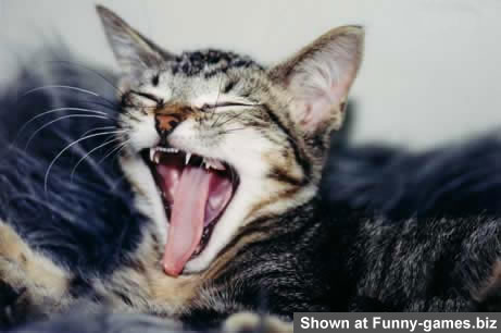 Yawn picture