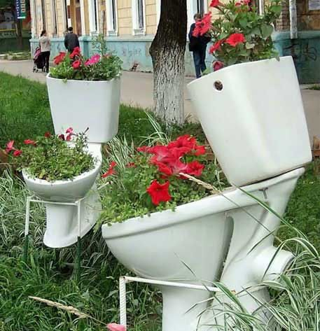 Nice Flower Pots picture