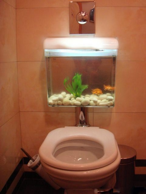 Stylish Water Closet picture