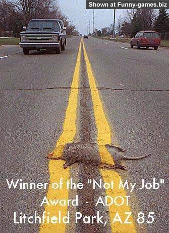 Damn Rat picture