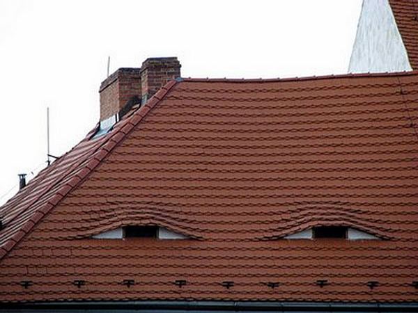 Roof with Eyes picture