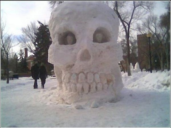 Snow Skull picture