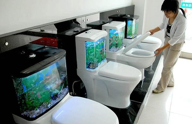Interesting Toilets picture
