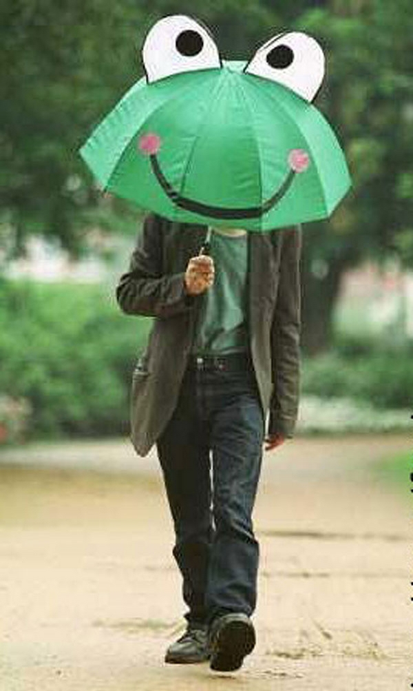 Frog Umbrella picture
