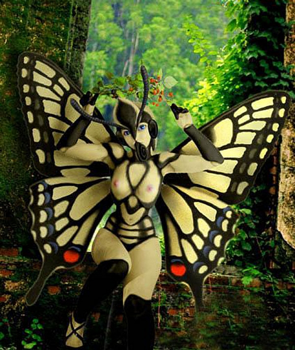 Sexy ButterFly picture