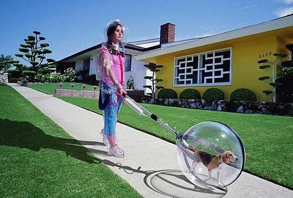 Future Life picture