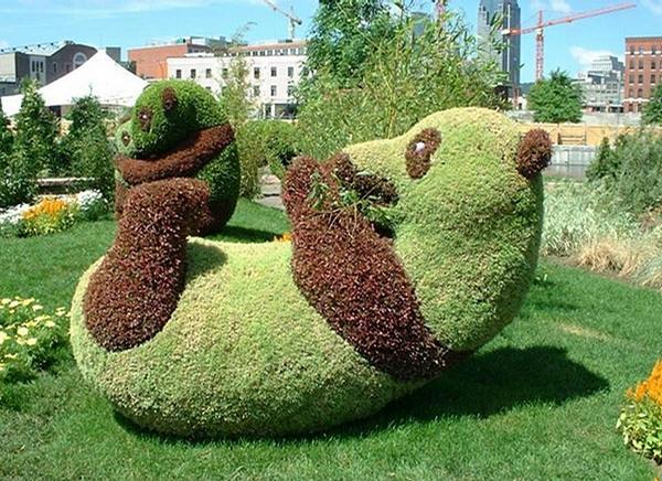 Nice Garden picture