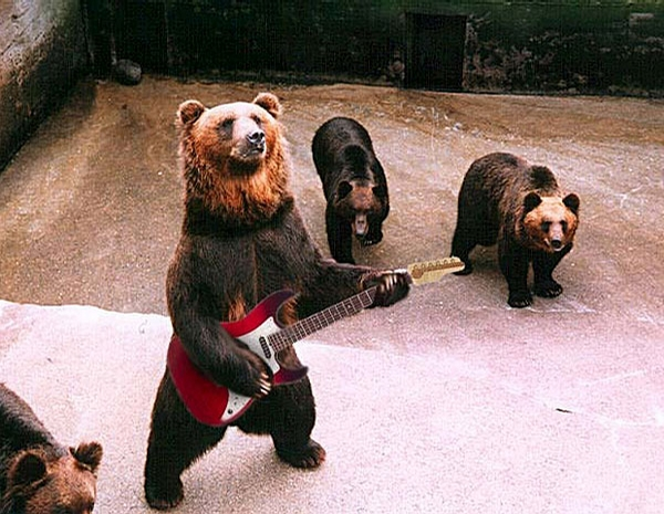 Bear Rock Band picture