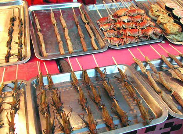 Fried Bugs picture