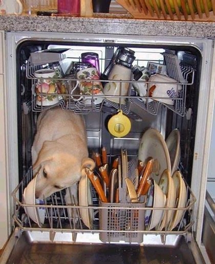 Dishwasher with Twist picture