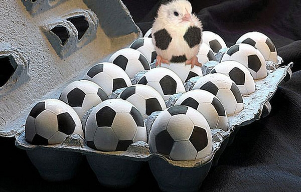 Image result for soccer eggs