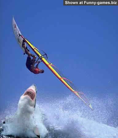 Wind Surfer picture
