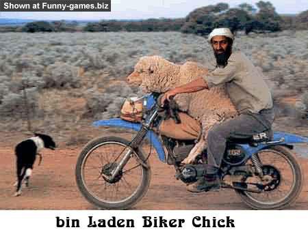 Usama Biker picture