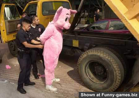 Pink Pig Arrested picture