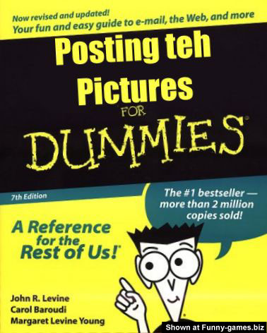 Pictures For Dummies picture