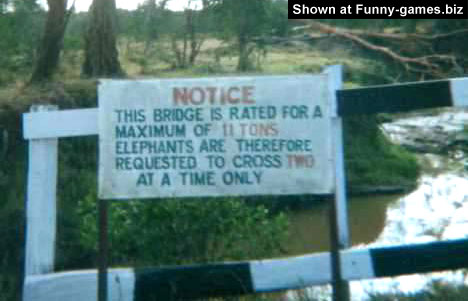 Elephant Sign picture