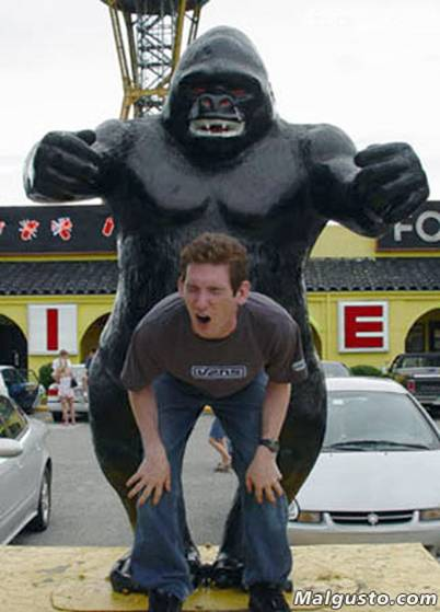 Used By King Kong picture