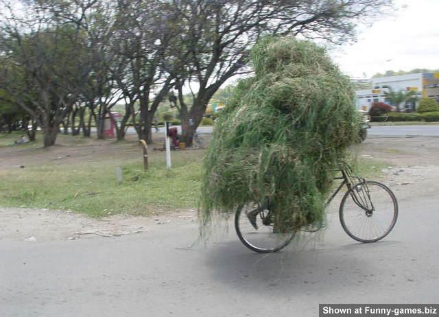 Farm Biker picture