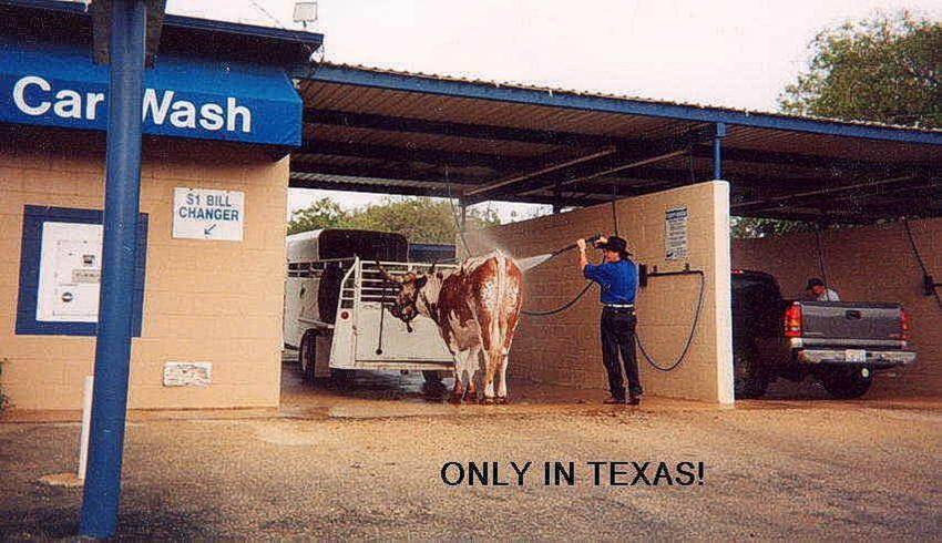 Only In Texas picture