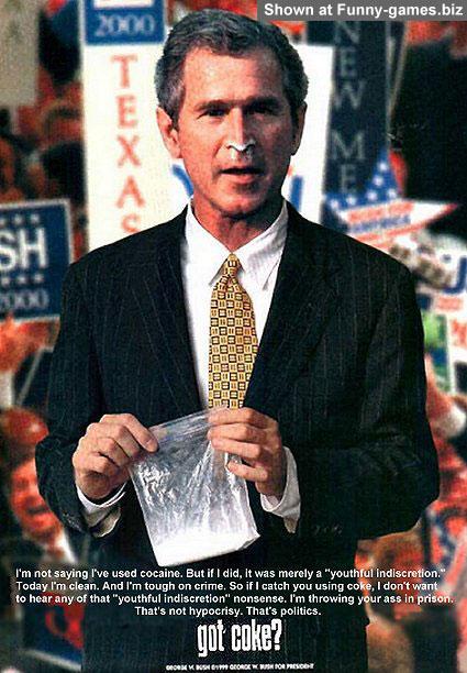 Bush Junkie picture