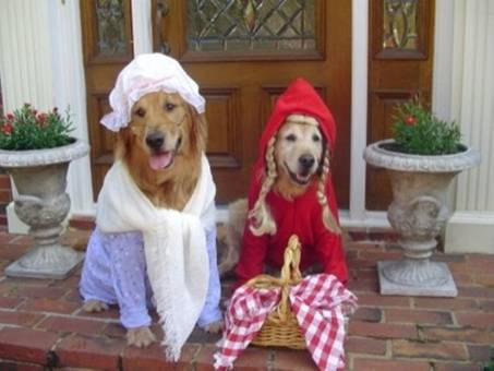 Red Riding Hood picture