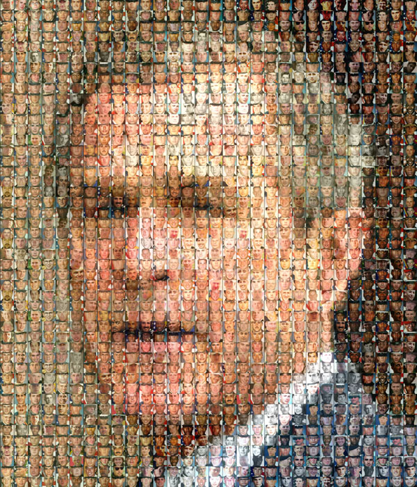 Bush Mosaic picture