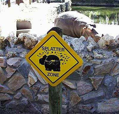 Hippo Sign picture