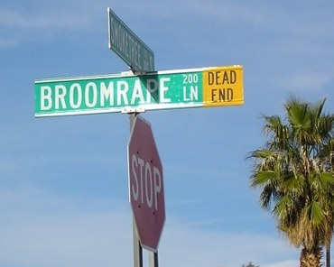 Broomrape Lane picture