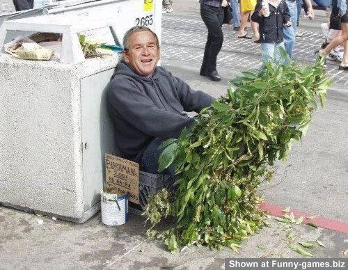 Hemeless George Bush picture