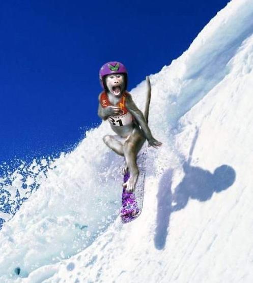 Strange Snowboarder picture