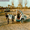 Donkey cart where rain does not matter funny picture sites