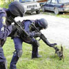 SWAT team is having trouble with small cat