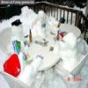 Funny dbz pics winter gardenparty