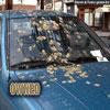 Funny car pics bird shit all over