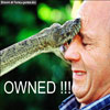 Funny animal pic give me a kisssss snake face bitten