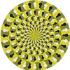 Do the spirals appear to be spinning