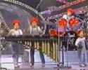 Straight from Japan, the Marimba Ponies