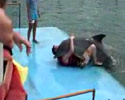 funny video of this dolphin and his trainer