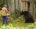 angry bear attacks lady who feeds it