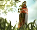 bunch of insects steal bottle of coca cola