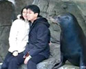 Sea Lion in Love